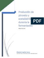 Producción de piruvato y acetaldehído durante la fermentación