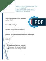 Vibrio Vulnificus Investigacion