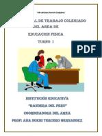 02-Plan de Trabajo Colegiado 2018