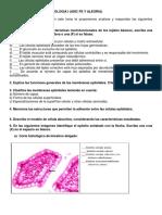 Evaluacion de Morfofisiologia i. Tejidos Basicos
