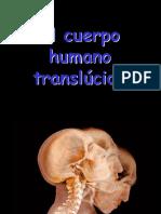 El Cuerpo Human o Trans Lucido