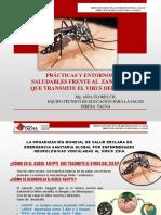 Ponencia Zika