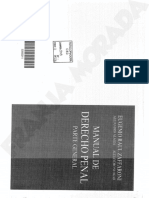 Penal Parte General Zaffaroni-penal estudio