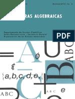 estructuras_algebraicas1.pdf