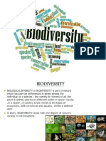 Biodiversity Values 4-12-17