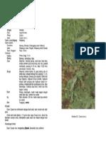 1-063.pdf