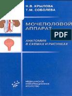 Крылова Н.В., Соболева Т.М. Мочеполовой Аппарат
