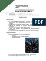 3. capitulos VII,VIII,IX.pdf