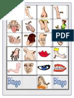 Bingo Cuerpo Humano