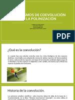Mecanismos de coevolucion de la polinizacion a.pdf