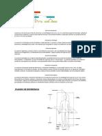 Anatomia Topográfica. Imagenes