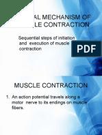 generalmechanismofmusclecontraction-120122083611-phpapp02