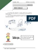 III TRIM - 1ER. Año - Guía 1 - Reino Animalia