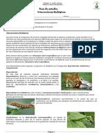 Guia 3° electivo de interacciones biologicas