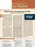 Rice Sector Report