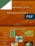 Algas y Parasitos