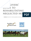 Rehab Neglected Horse