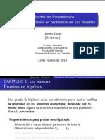 ACETATOS Npar II 2009 1 Muestra Simplificados Para Npar Aplicada