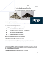 evolution inquiry  peppered moths