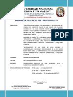 Informe Final de Practicas Pre - Profesionales