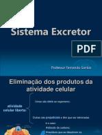 sistemaexcretor
