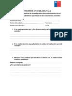 325524736-Cuestionario-de-Apego-Del-Adulto-Aai.docx