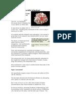 HIV - CSA_54.doc