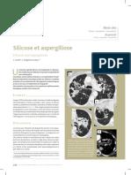 2010_Silicosis and Aspergillosis_caz Clinic
