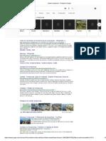 Cidade Amazonas - Pesquisa Google