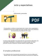 Estrategia Laboral-Proyecto y Expectativas