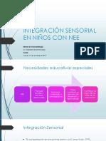 Integración Sensorial en Niños Con Nee