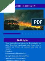 Incêndio Florestal.ppt