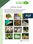 CLASIFICANDO ANIMALES.doc