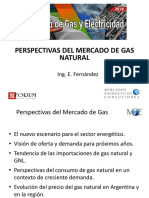 02-Perspectivas Del Mercado de Gas Natural-fernández
