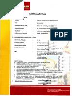 C.V. DACAVE.pdf
