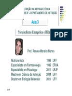 Metabolismo Energético e Hidratação.pdf