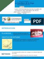 Prevalencia y Grado de Fluorosis