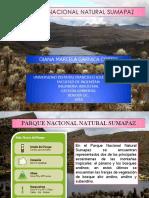 Paramo Del Sumapaz