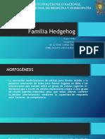 Familia Hedgehog 2