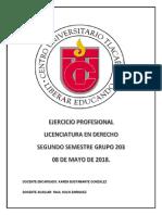 Ejercicio Profesional 203