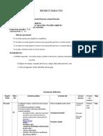 Proiect Didactic Adunarea Rapoartelor Algebrice