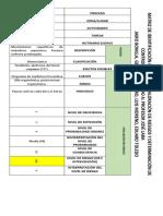 Matriz IPEVR Jotta Bonilla.docx