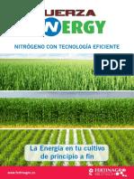 Renovation Fuerza Energy