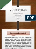 PPT FOTOSINTESIS
