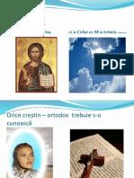 S.2-3 Crezul