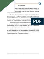 1° INFORME DE TOPO MINERA I