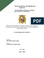 Plan de Tesis Pedro Aquino Aquino