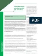 Santiago Palomino Guzmán_La Sustitución de Combustibles Fósiles en el Sector Cementero. Oportunidad para Reducir el Vertido de Residuos.pdf