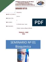 SEMINARIO_N01