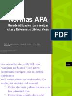 EMI PGI3 12 Referencias Bibliograficas APA (1)
